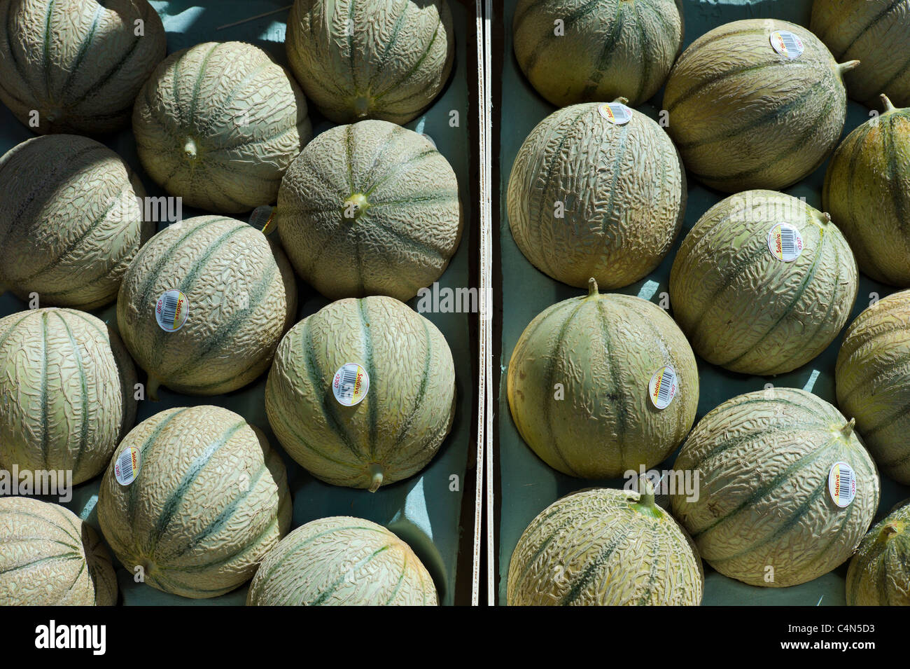 French Charentais melons on sale at food market at La Reole in Bordeaux region of France - Stock Image