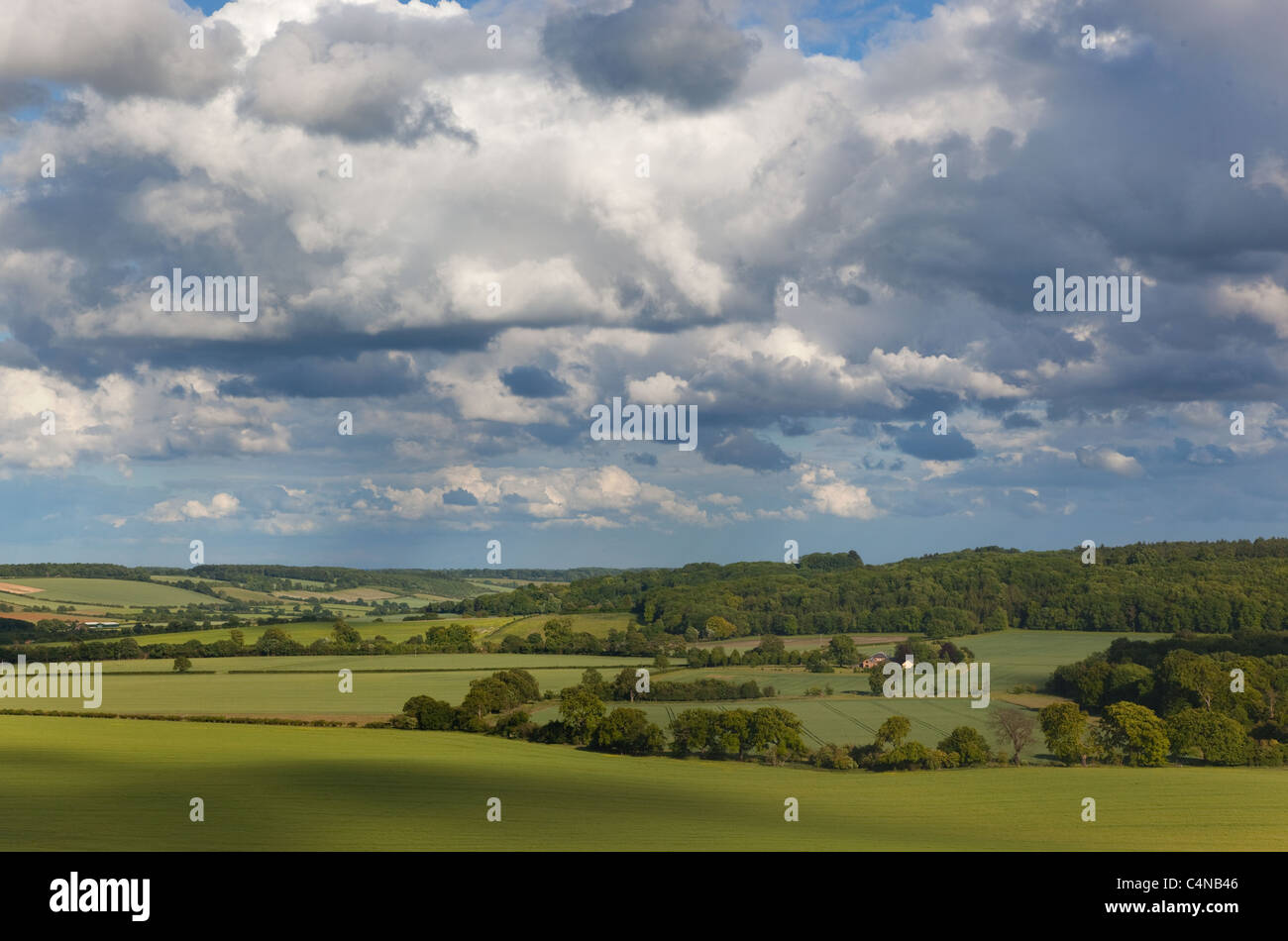 Wards Coombe from Ivinghoe hills Chilterns Buckinghamshire - Stock Image