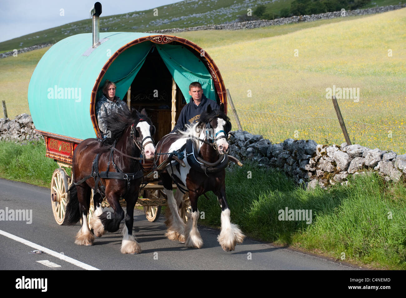 Horse drawn Gyrpsy caravan on main road near Sedbergh at time of Appleby Fair. - Stock Image