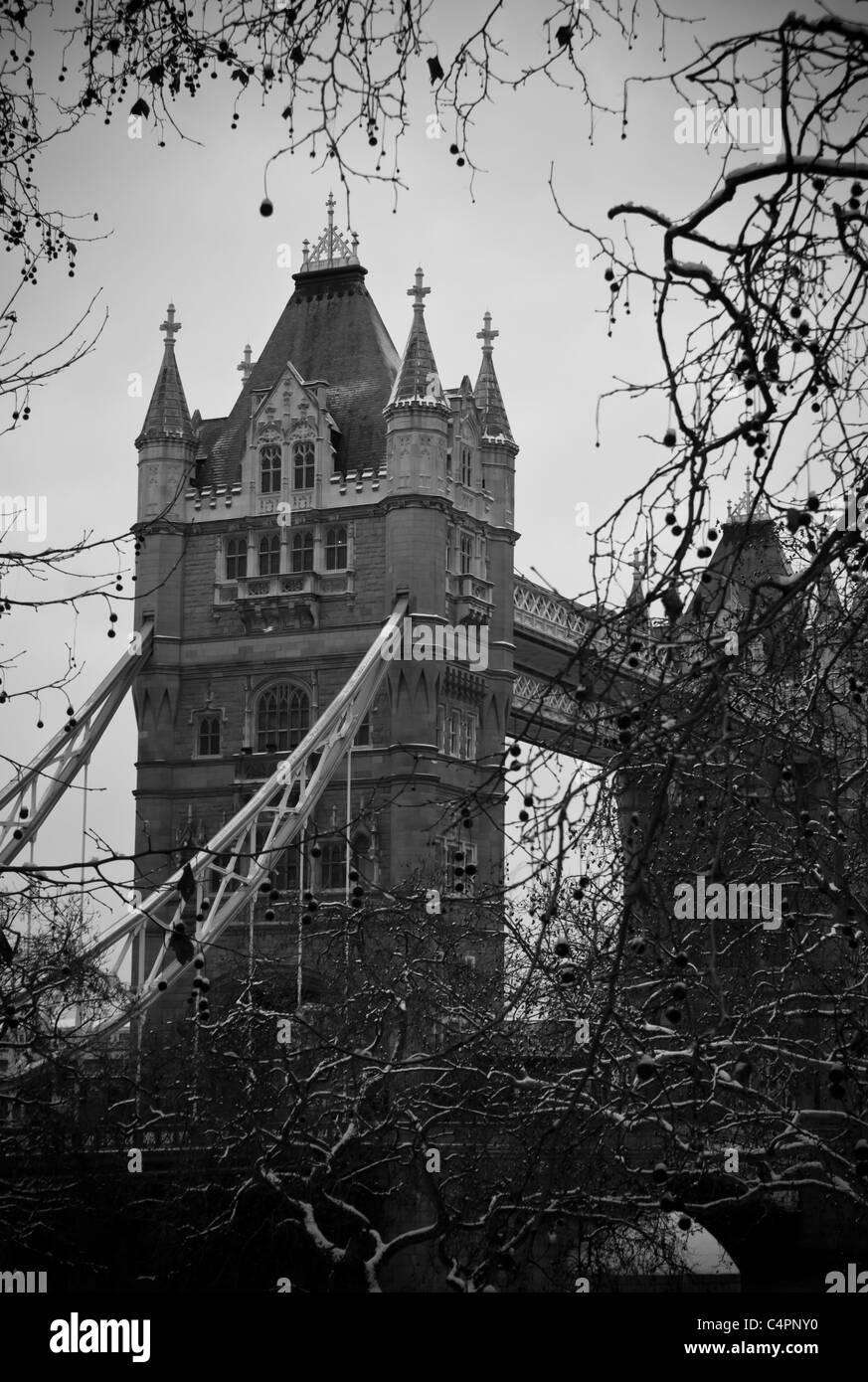 Tower Bridge in London through the trees - Stock Image
