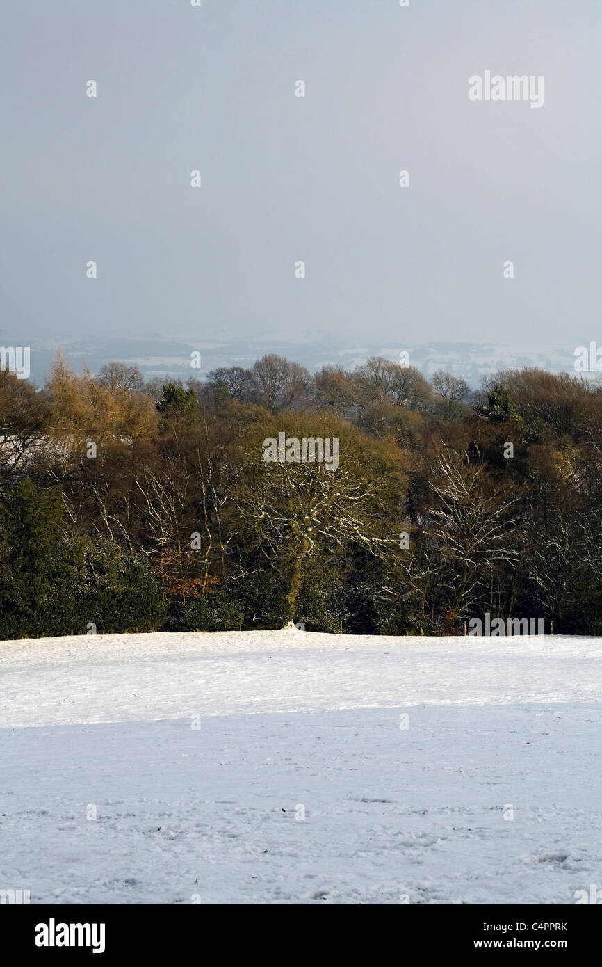 Snow covered fields hedges and trees winter by a footpath Alderley Edge Cheshire England Stock Photo