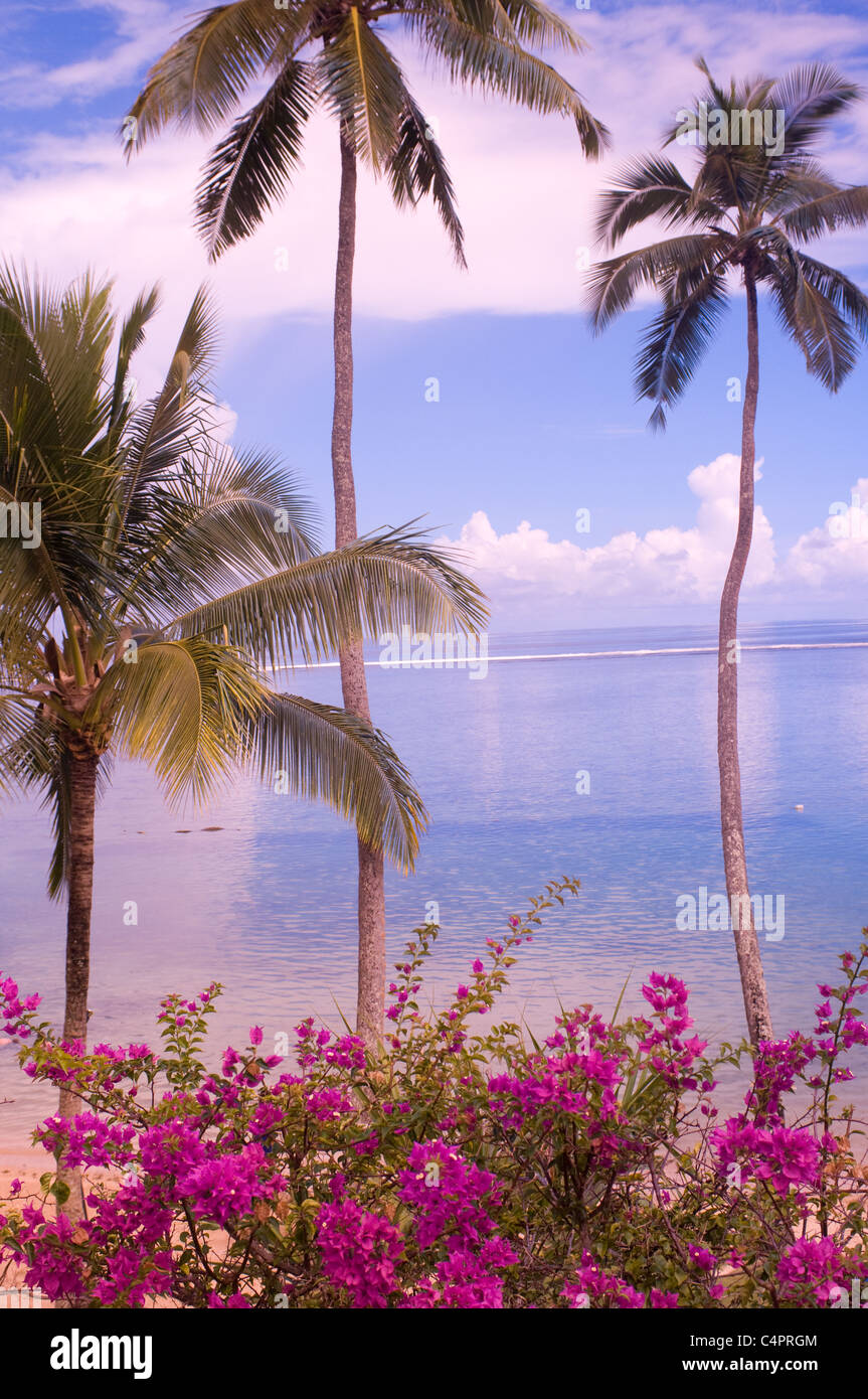 Beach along Coral Coast Viti Levu island Fiji South Pacific - Stock Image