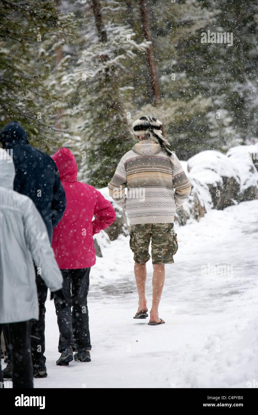 eccentric-man-wearing-shorts-and-flip-flops-in-a-snow-storm-C4PYBX.jpg