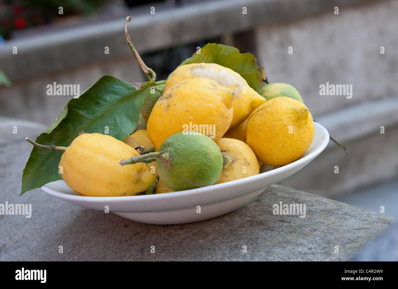 bowl of freshly picked lemons, tuscany, italy Stock Photo