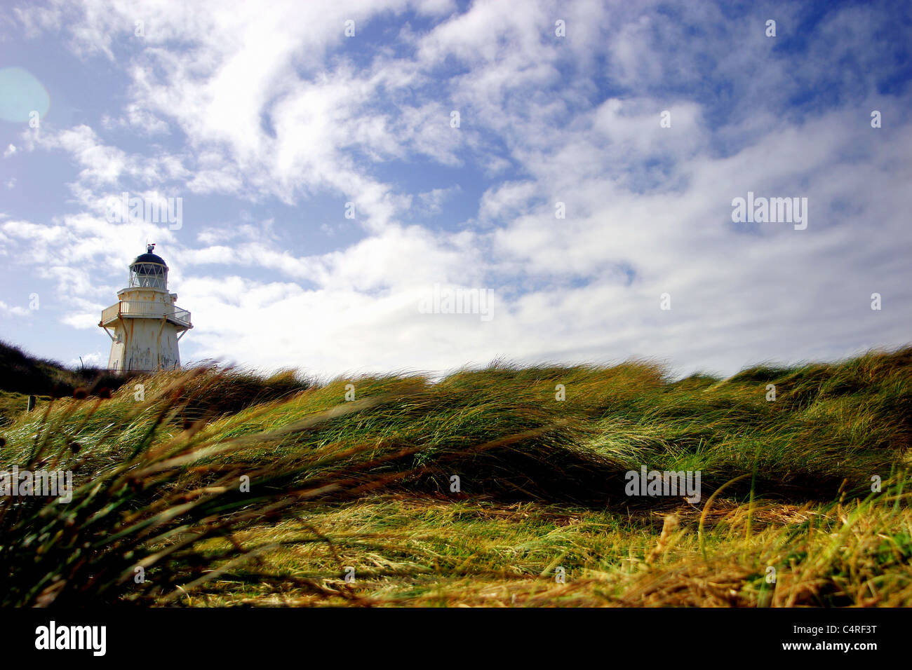 Lighthouse on a breezy day, The Catlins, South Island, New Zealand - Stock Image