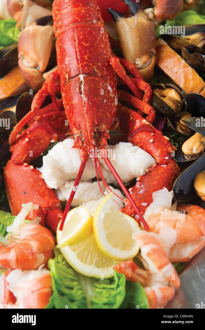 Seafood platter lobster prawn shrimp lemon garnish fresh food - Stock Image