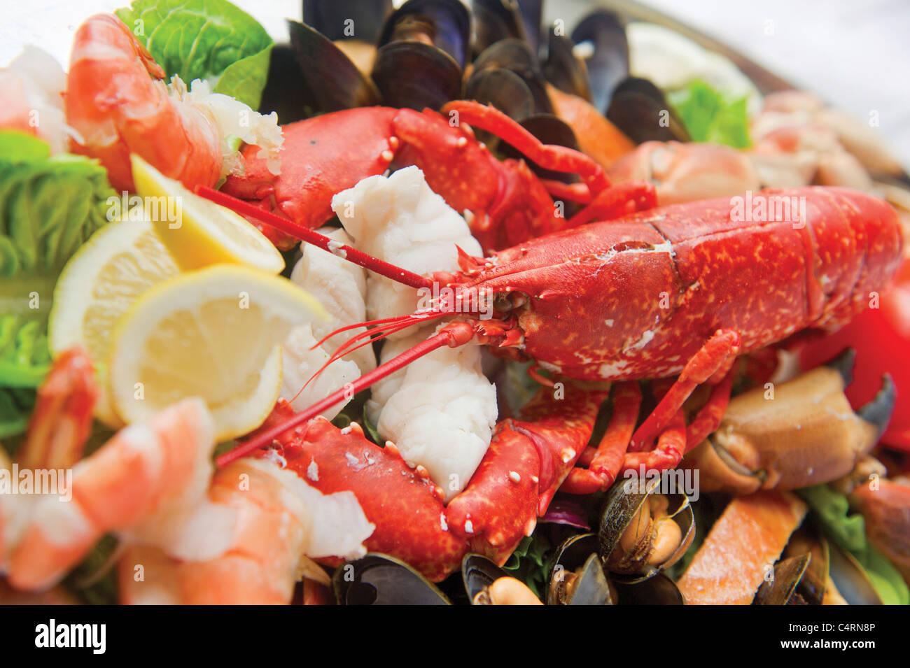 Seafood platter lobster prawn shrimp lemon garnish fresh - Stock Image