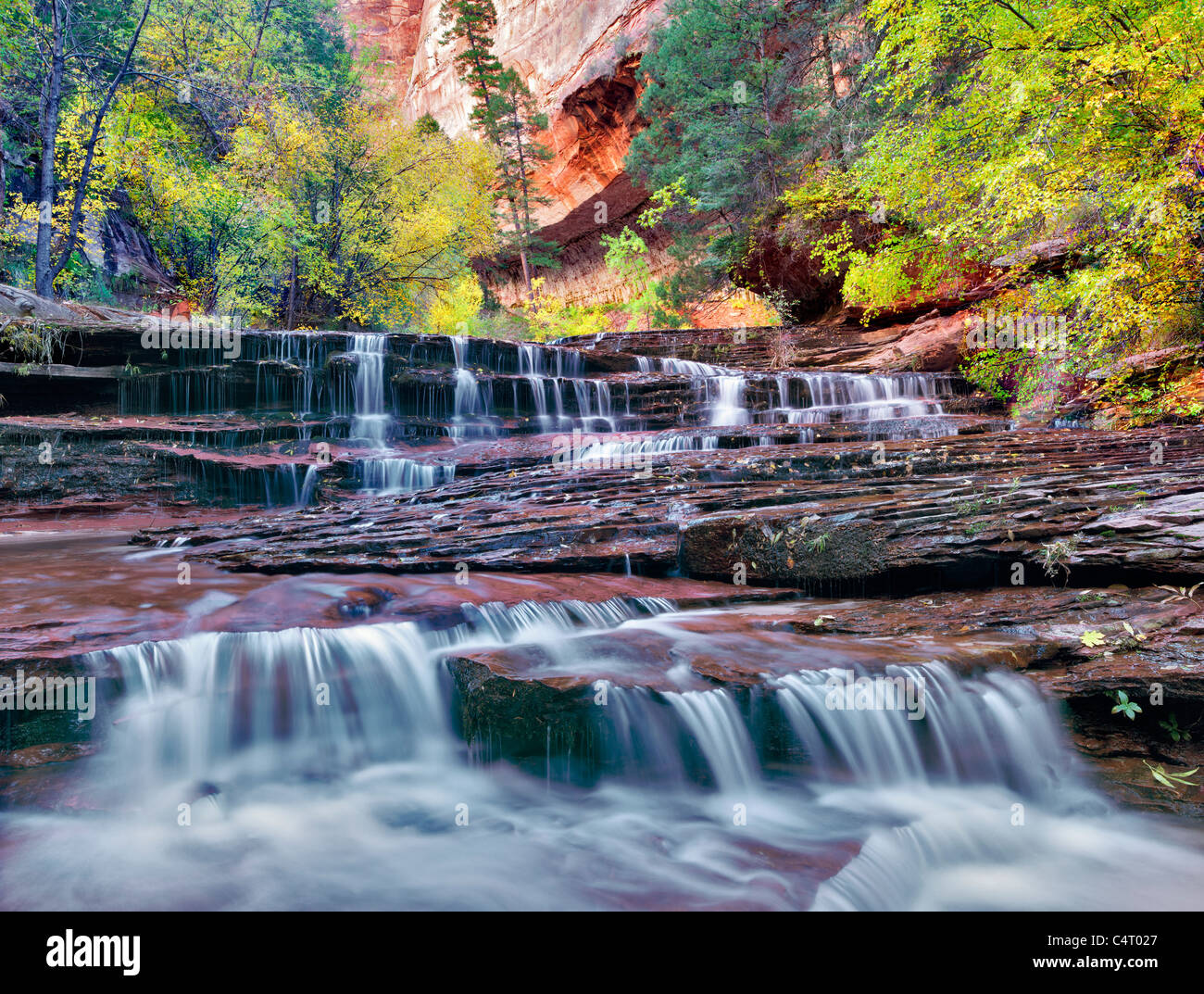 Archangel falls and fall color. Left Fork of North Creek. Zion National Park, Utah. - Stock Image