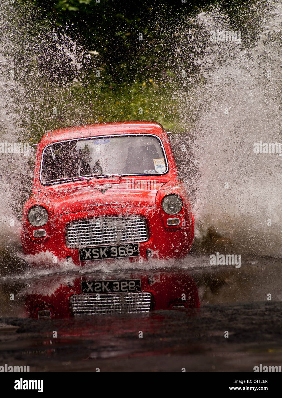 Renovated classic car 1959 Ford Anglia 100E going through water ford - Stock Image