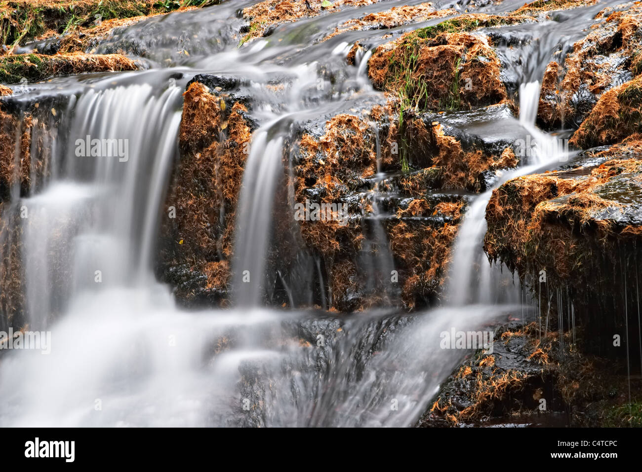 Blaen-y-glyn waterfalls, Talybont Forest, Brecon Beacons National Park, Wales Stock Photo