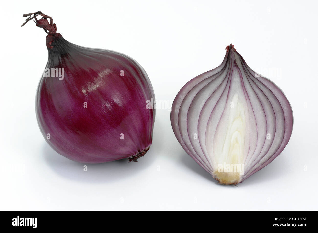 Garden Onion (Allium cepa). Red onion, whole and halved. Studio picture against a white background. - Stock Image