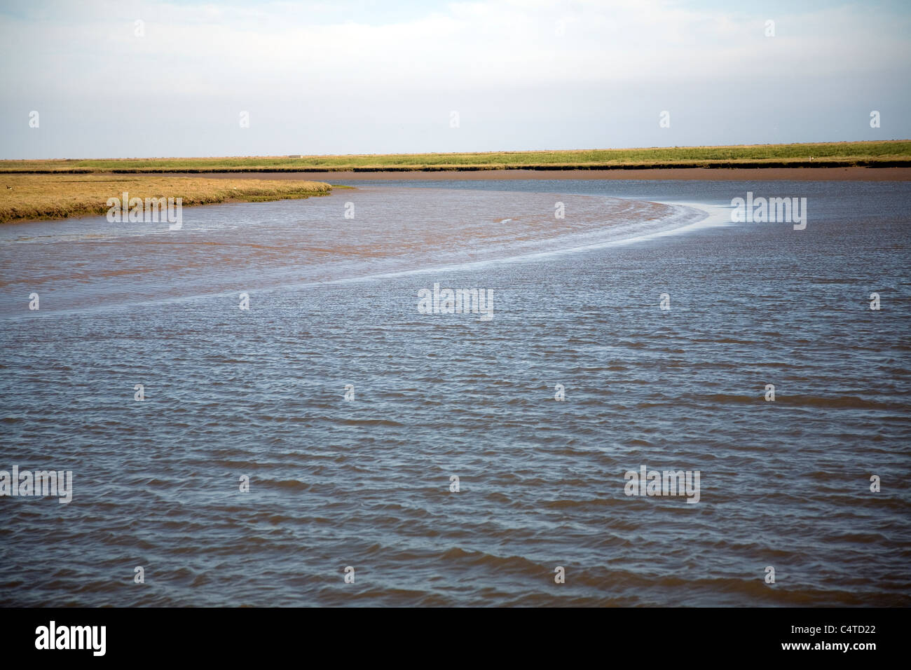 Butley River creek with muddy river bed, Boyton, Suffolk, England Stock Photo