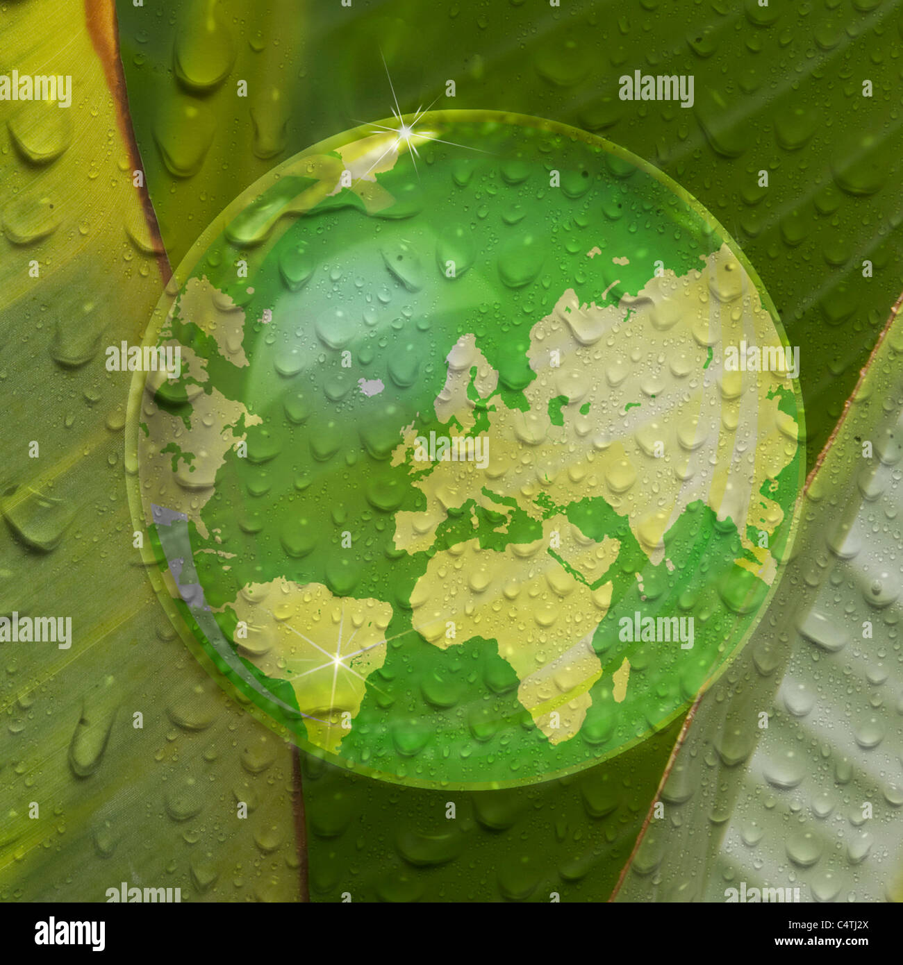 Map of earth reflected in droplet of water on plant leaf - Stock Image