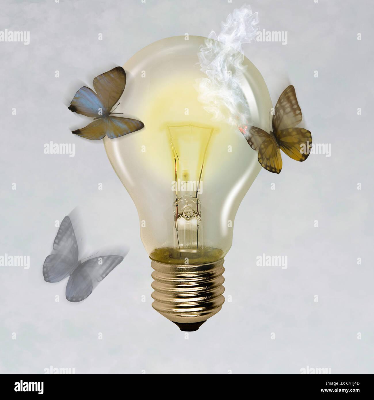 Moths flying around illuminated light bulb, one moth's wing burned - Stock Image