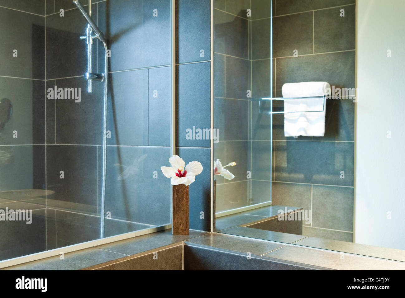 Shower Time Stock Photos & Shower Time Stock Images - Page 3 - Alamy