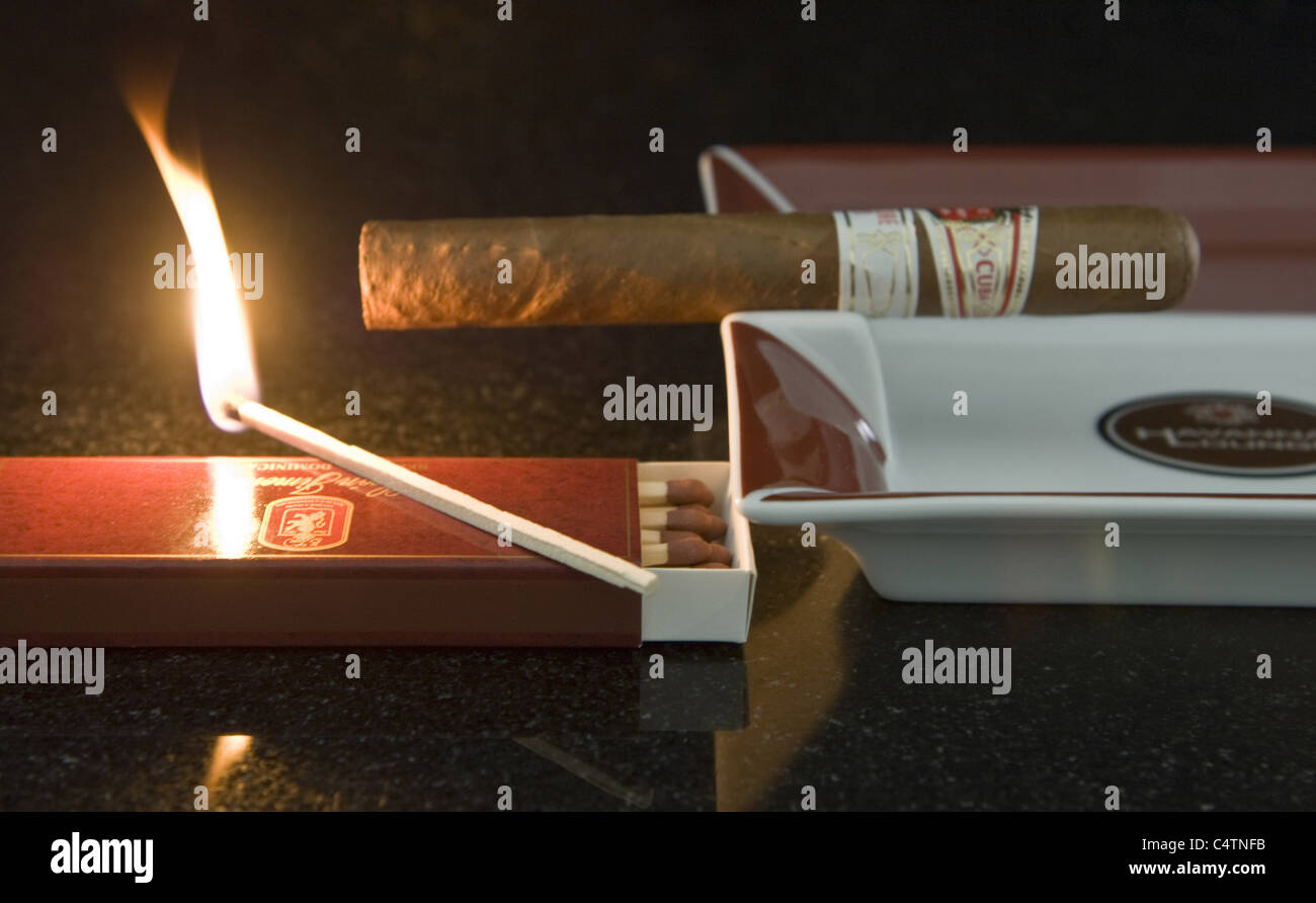 cigar with matches - Stock Image