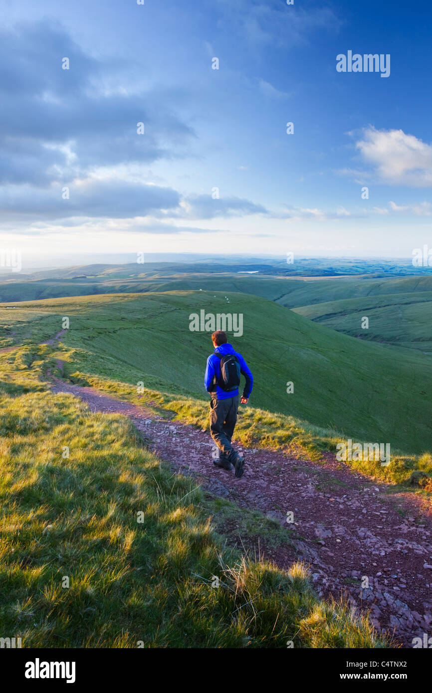 Caucasian Male Walker (32 Years Old) descending from Carmarthen Fan in The Black Mountains. Brecon Beacons.  Wales. - Stock Image