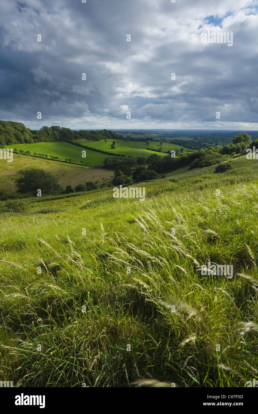 View from Creech Hill near Bruton. Somerset. England. UK. - Stock Image