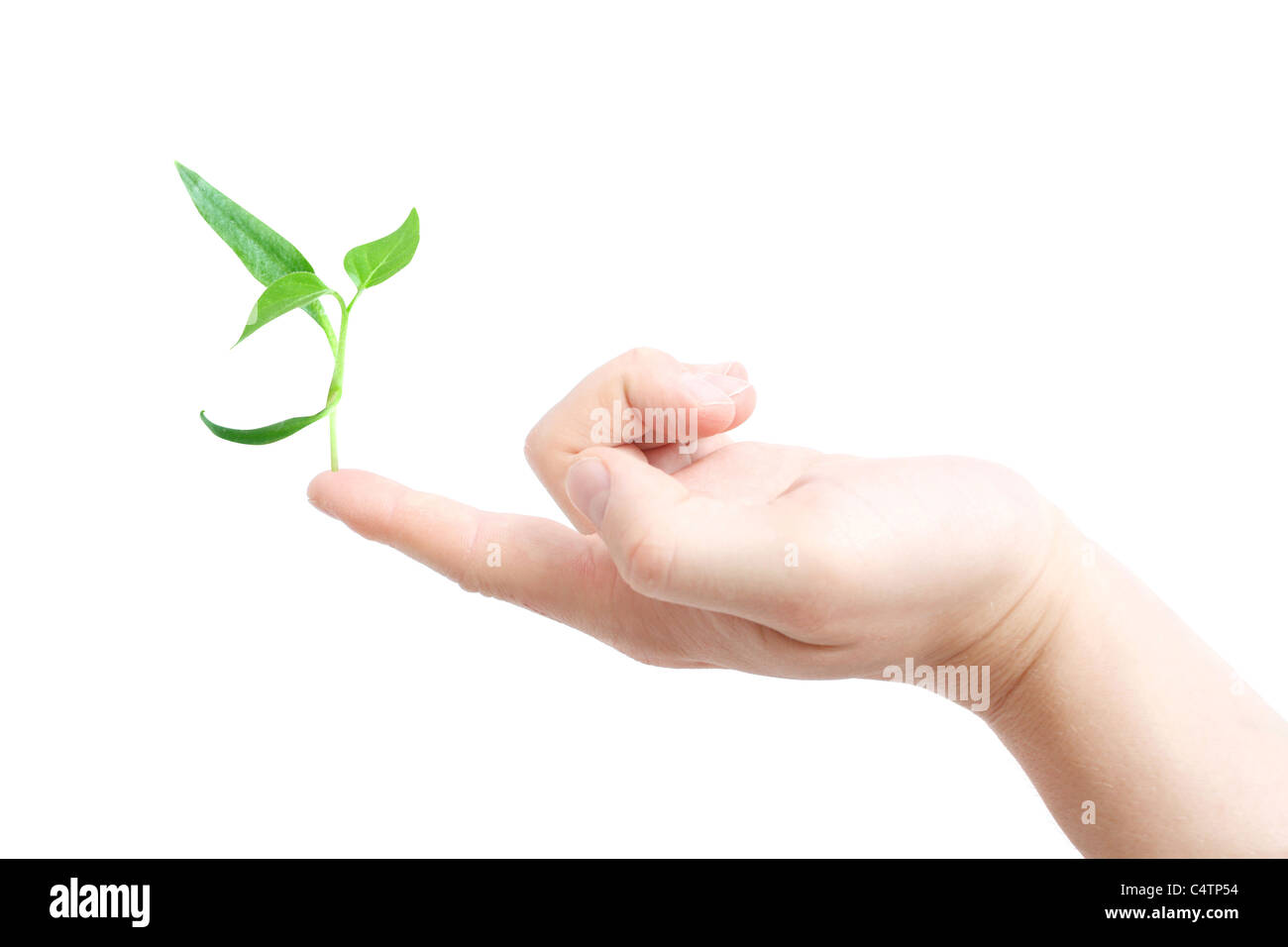 Finger supporting a new plant - Stock Image