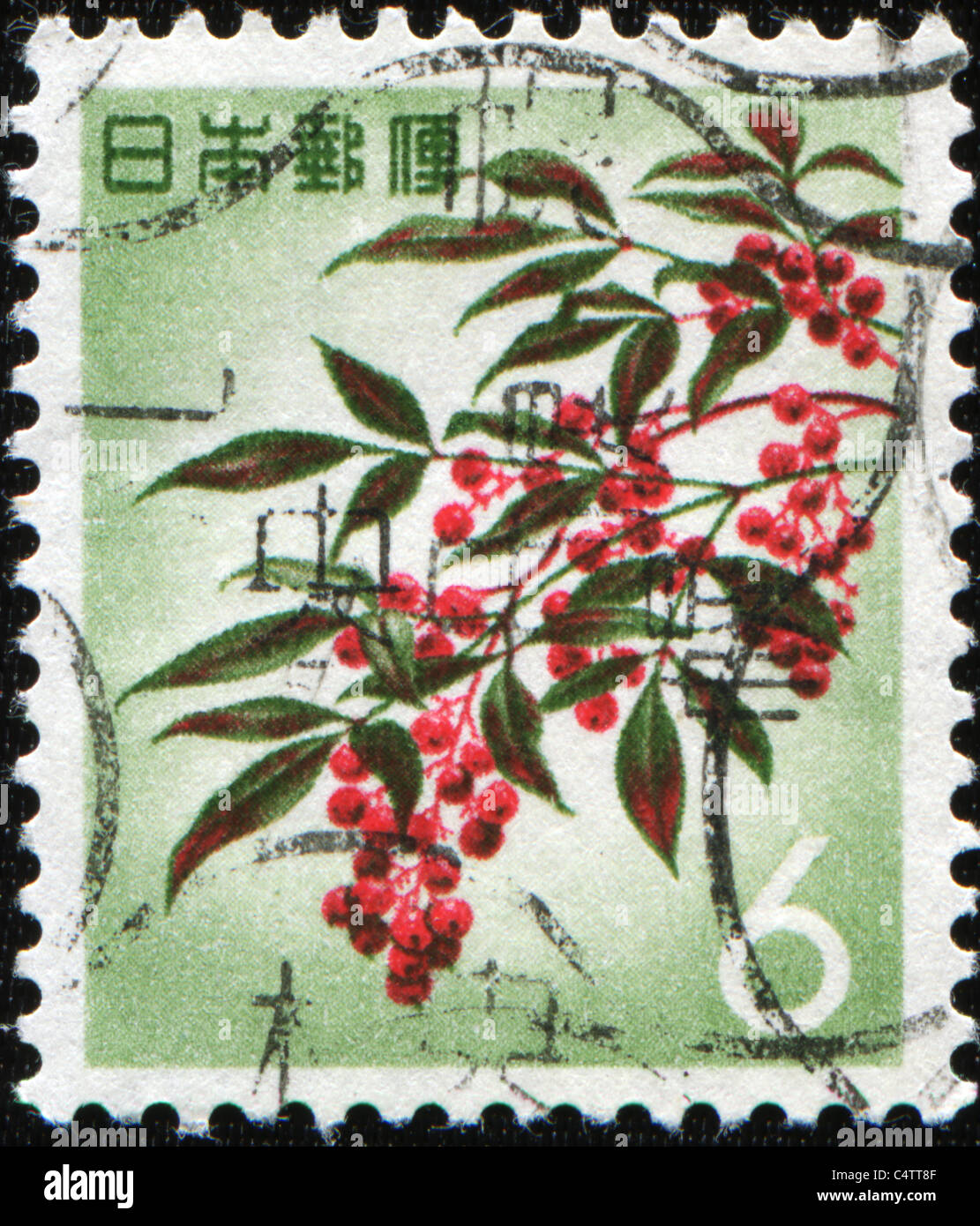 JAPAN - CIRCA 1960s: A stamp printed in Japan shows Japanese rowans or mountain-ashes - Sorbus commixta, circa 1960s Stock Photo