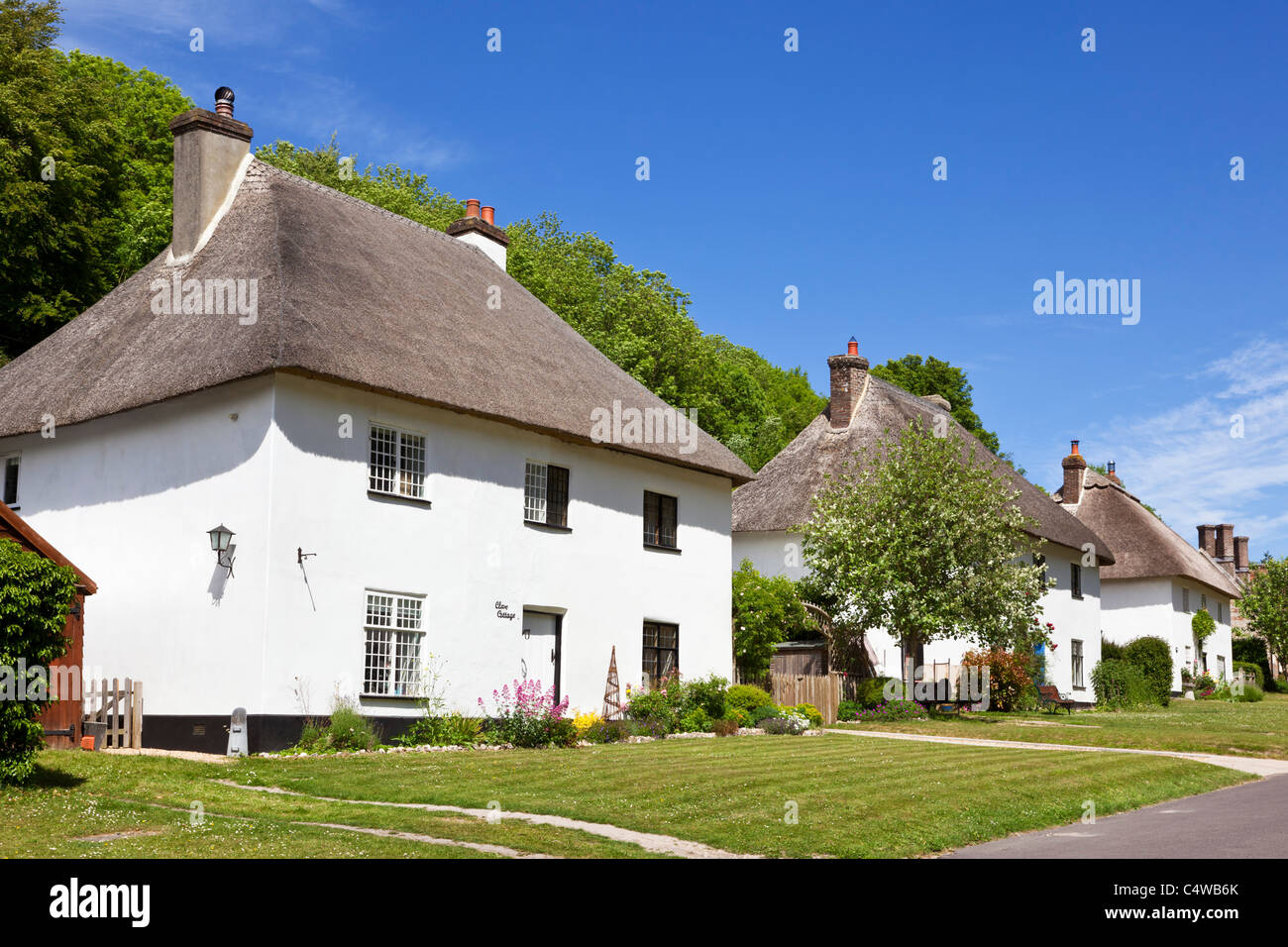 Row of detached thatched cottages, Milton Abbas, Dorset, England, UK - Stock Image