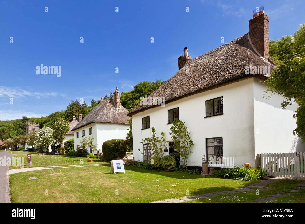 Row of traditional detached thatched cottages, Milton Abbas, Dorset, England, UK - Stock Image