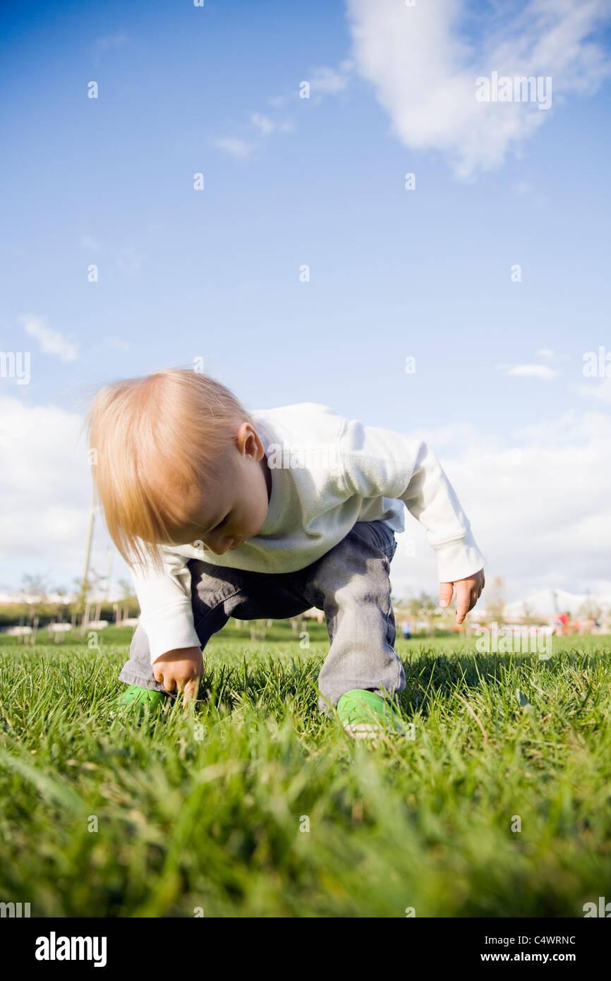 USA,New York City,baby boy (0-1 years) on grass - Stock Image