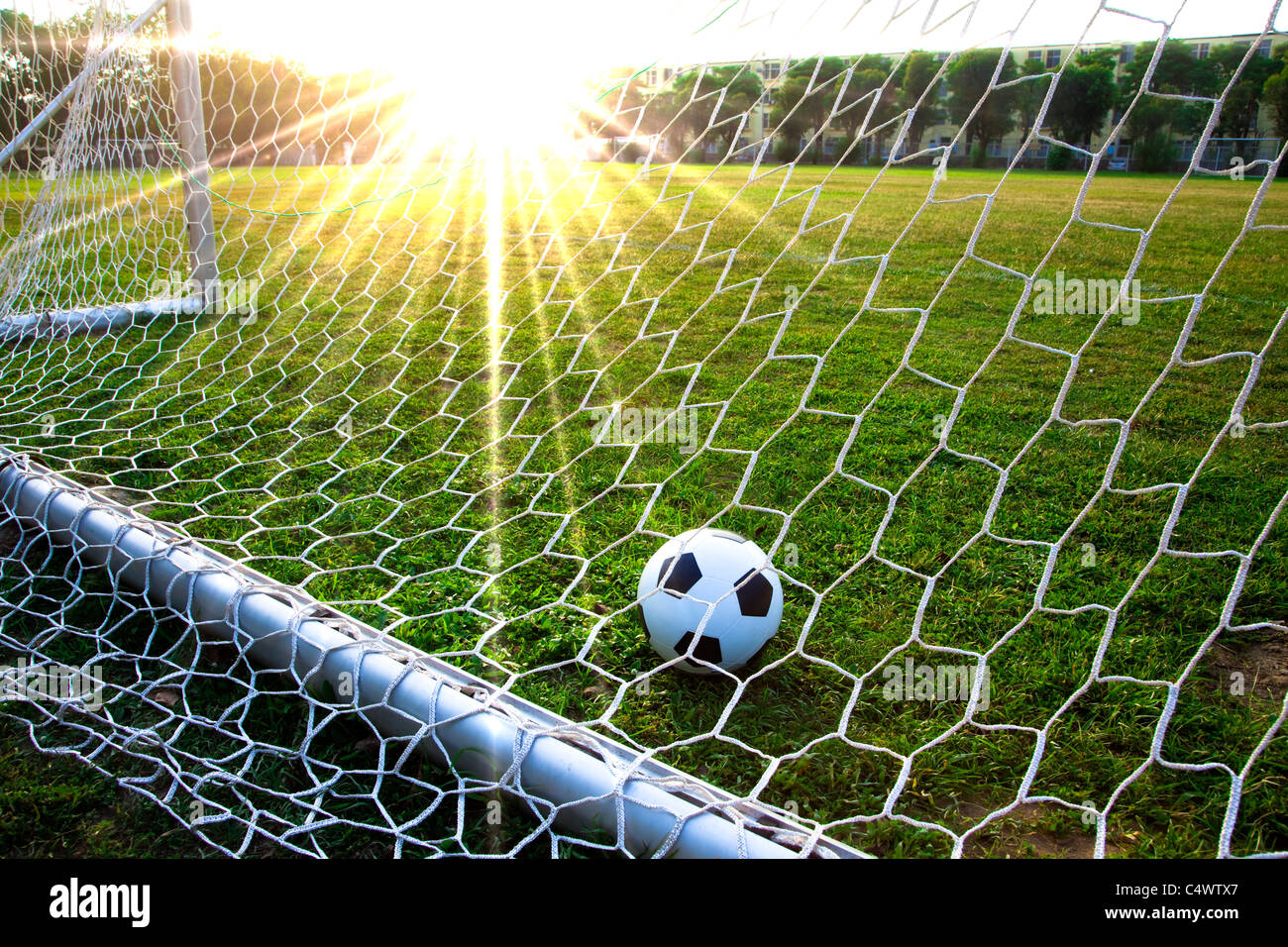 868637e57 a soccer ball in a grass field and goal Stock Photo: 37447711 - Alamy