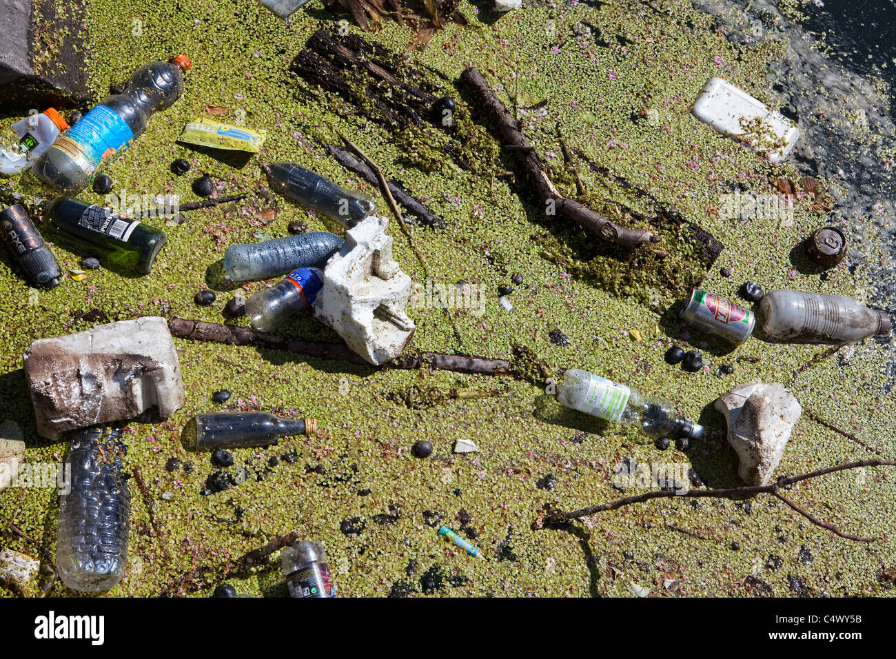 Small creek with pollution - Stock Image