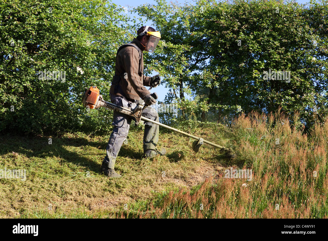 Young man cutting the grass with a string trimmer - Stock Image
