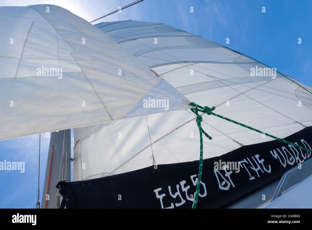 Looking up at sheets of the mainsail and genoa of a sailboat while out sailing - Stock Image