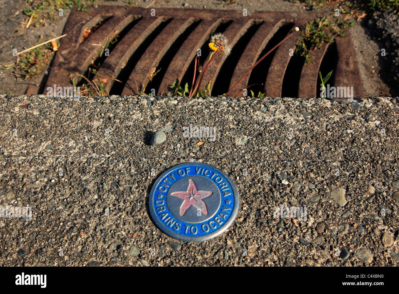 City of Victoria drains to the ocean sign by a sewer grate on Dallas Rd. Victoria BC Canada - Stock Image