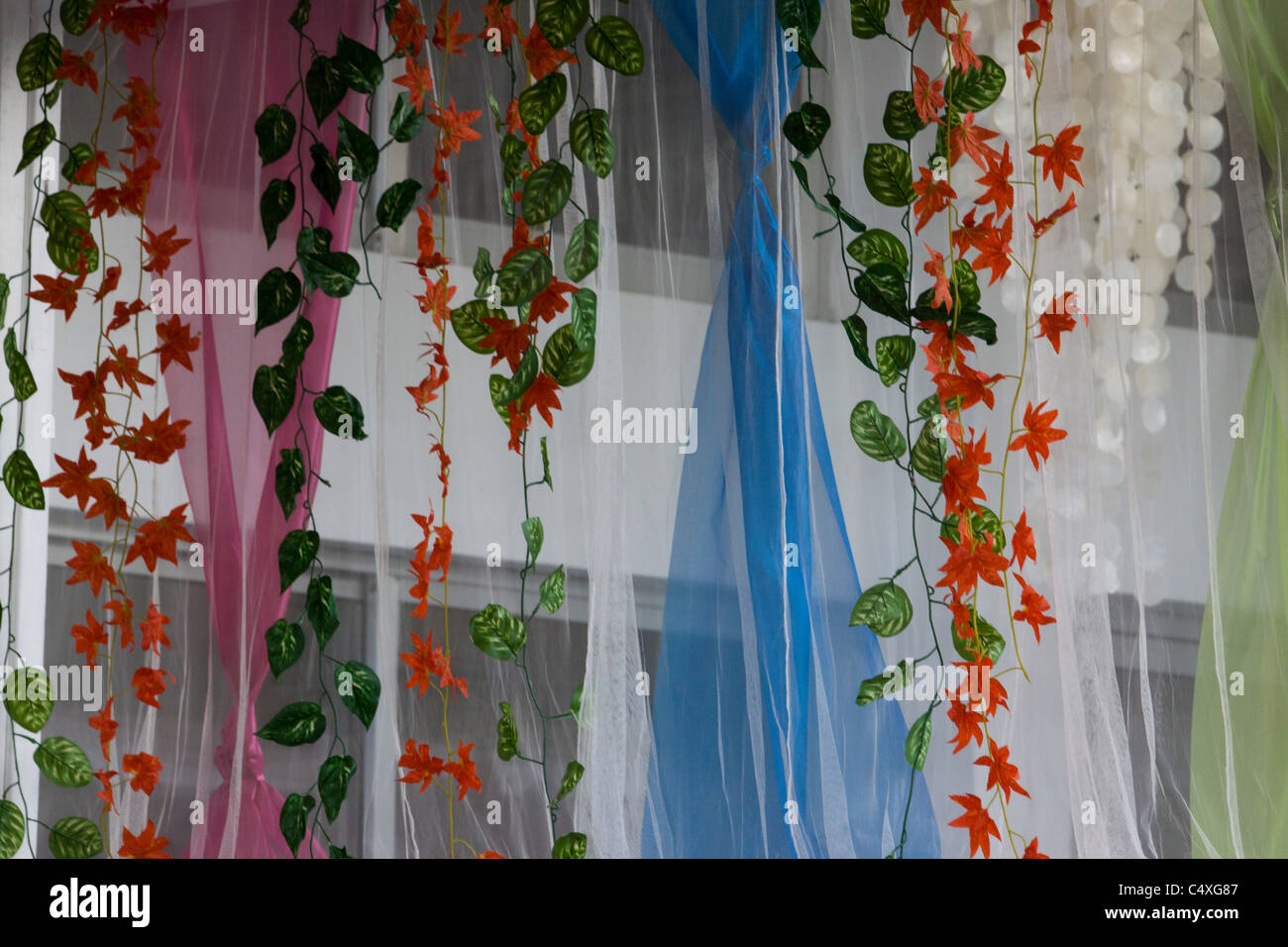 net curtains and flowers - Stock Image