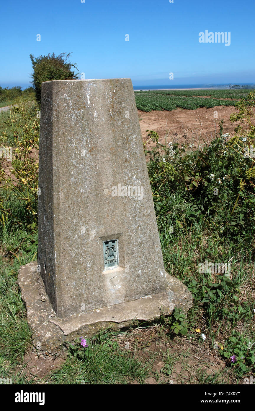 Ordnance Survey trig point south of Holme-next-the-Sea, North Norfolk, UK - Stock Image