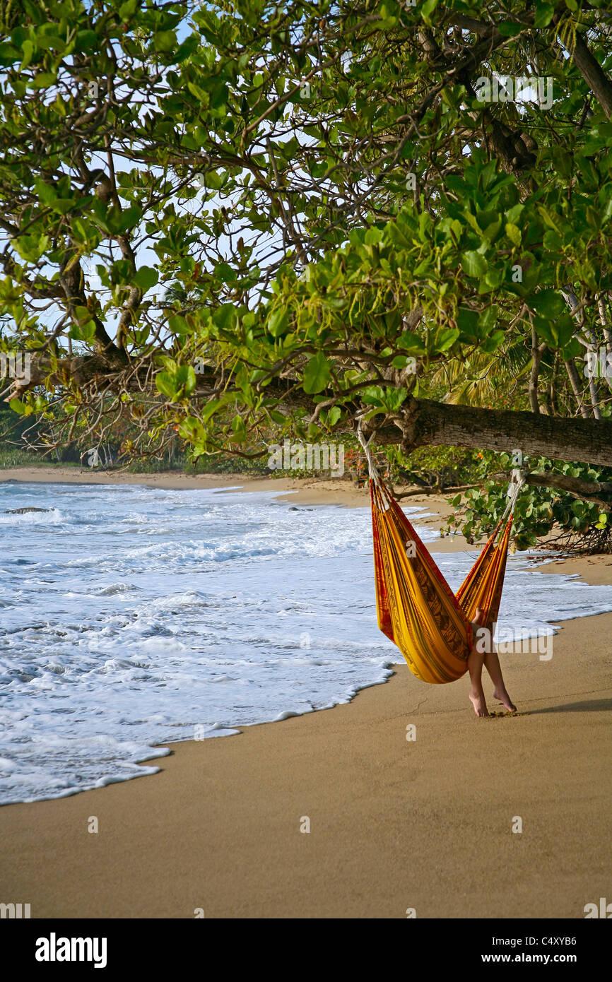 Beach hammock in Puerto Rico near Rincon - Stock Image