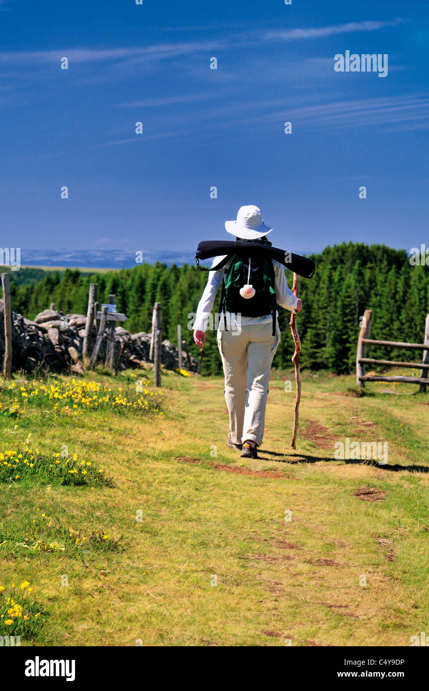 France, St. James Way: St. James pilgrim walking in the mountain area of Aubrac - Stock Image