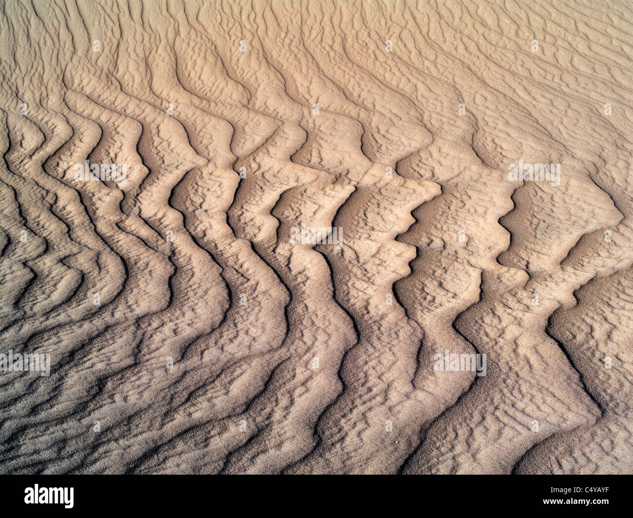 Patterns in sand after intense wind storm. Death Valley National Park, California Stock Photo