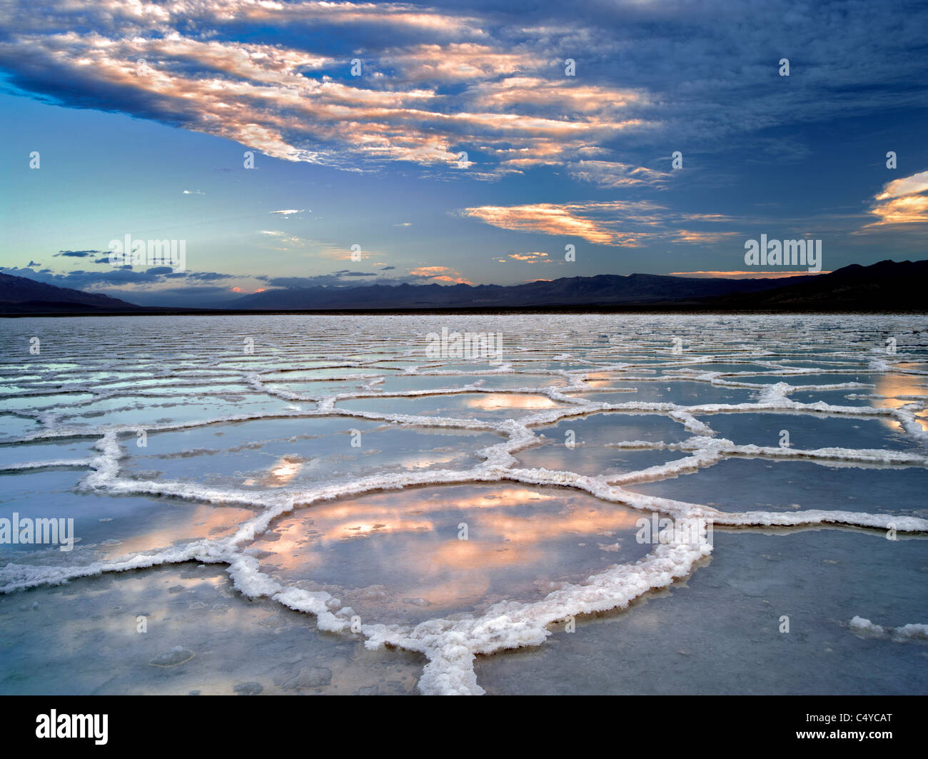 Salt poygons with water in them after rain storm. Death Valley National Park, California. - Stock Image