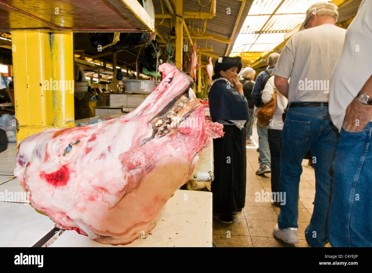 Skinned boar's head in open-air market in Otavalo Ecuador - Stock Image