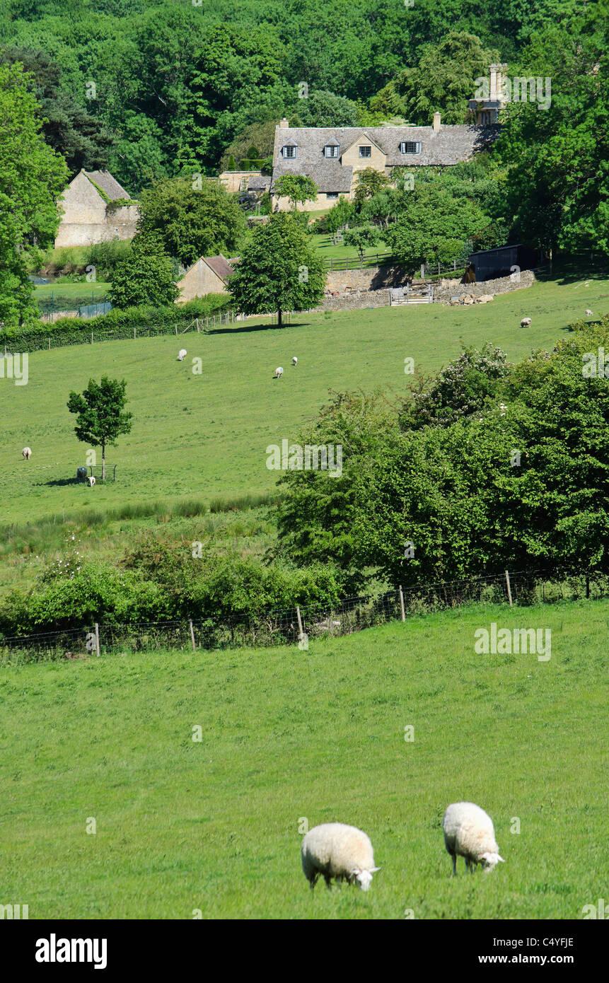 cotswold landscape saintbury glocestershire - Stock Image
