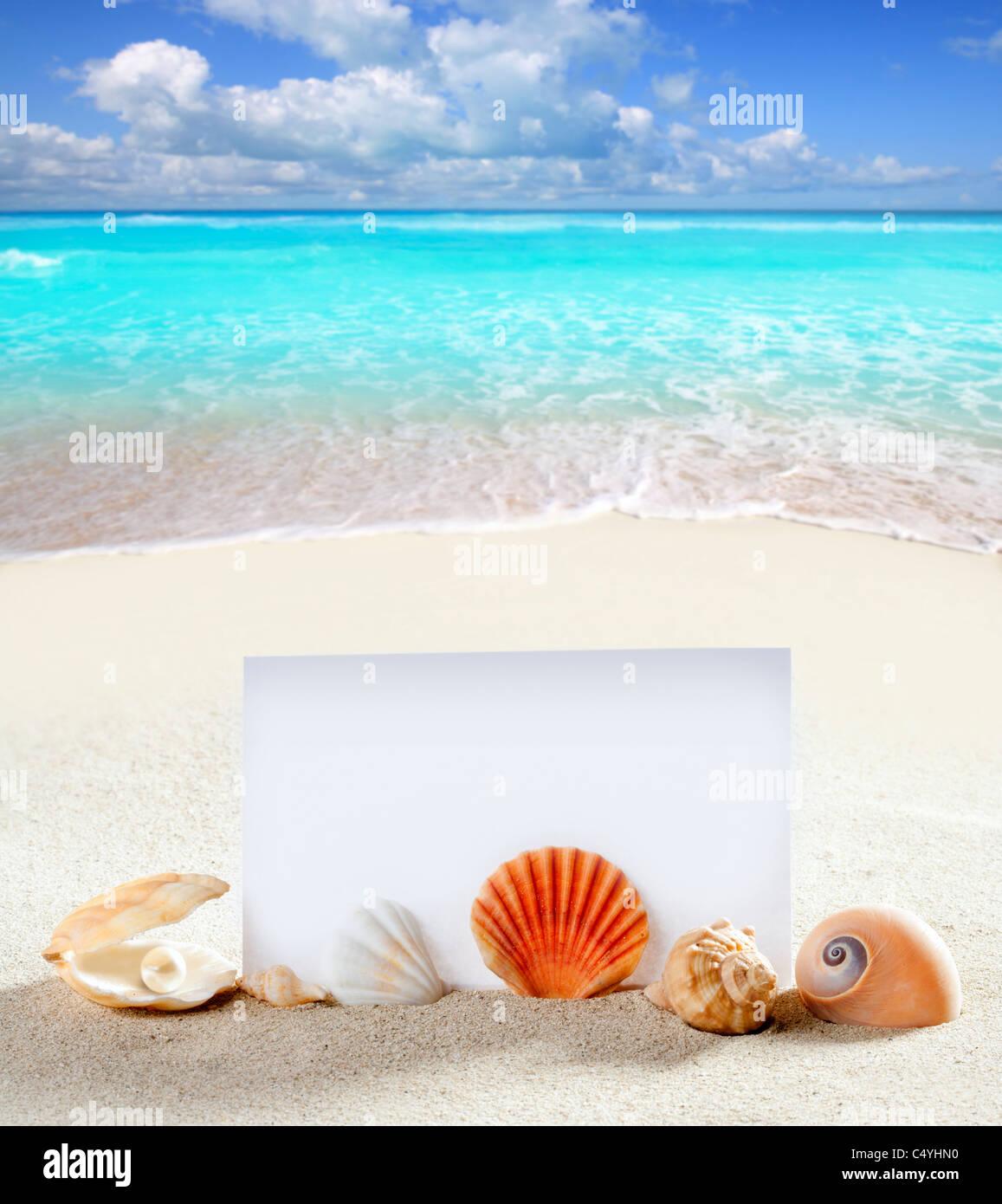 Vacation at the beach essay