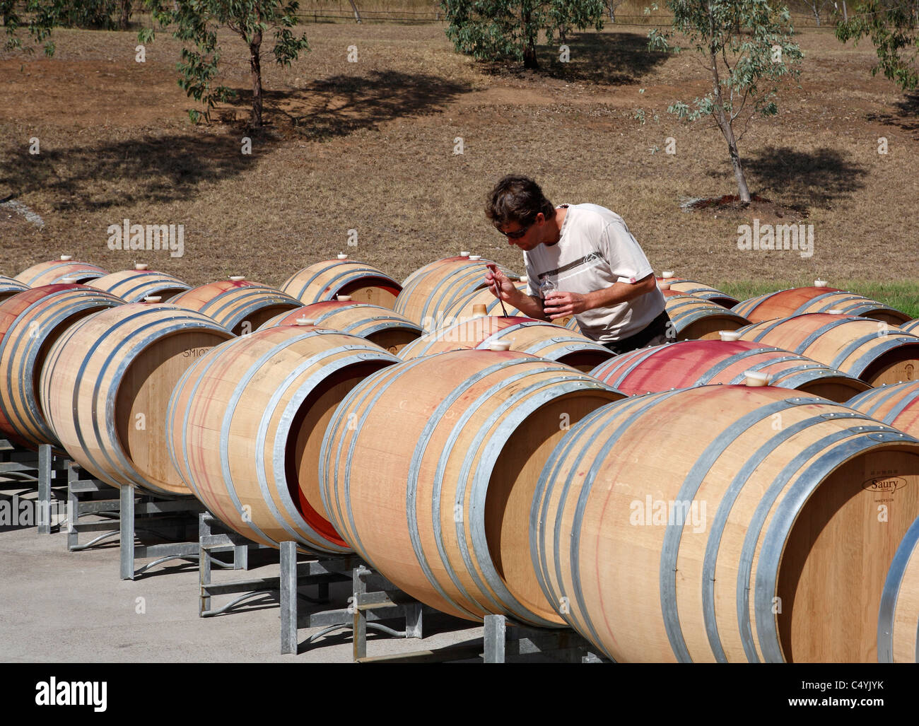 Cellarmaster using a 'wine thief' to check the fermentation of red wine. Tempus Two winery, Hunter Valley, - Stock Image