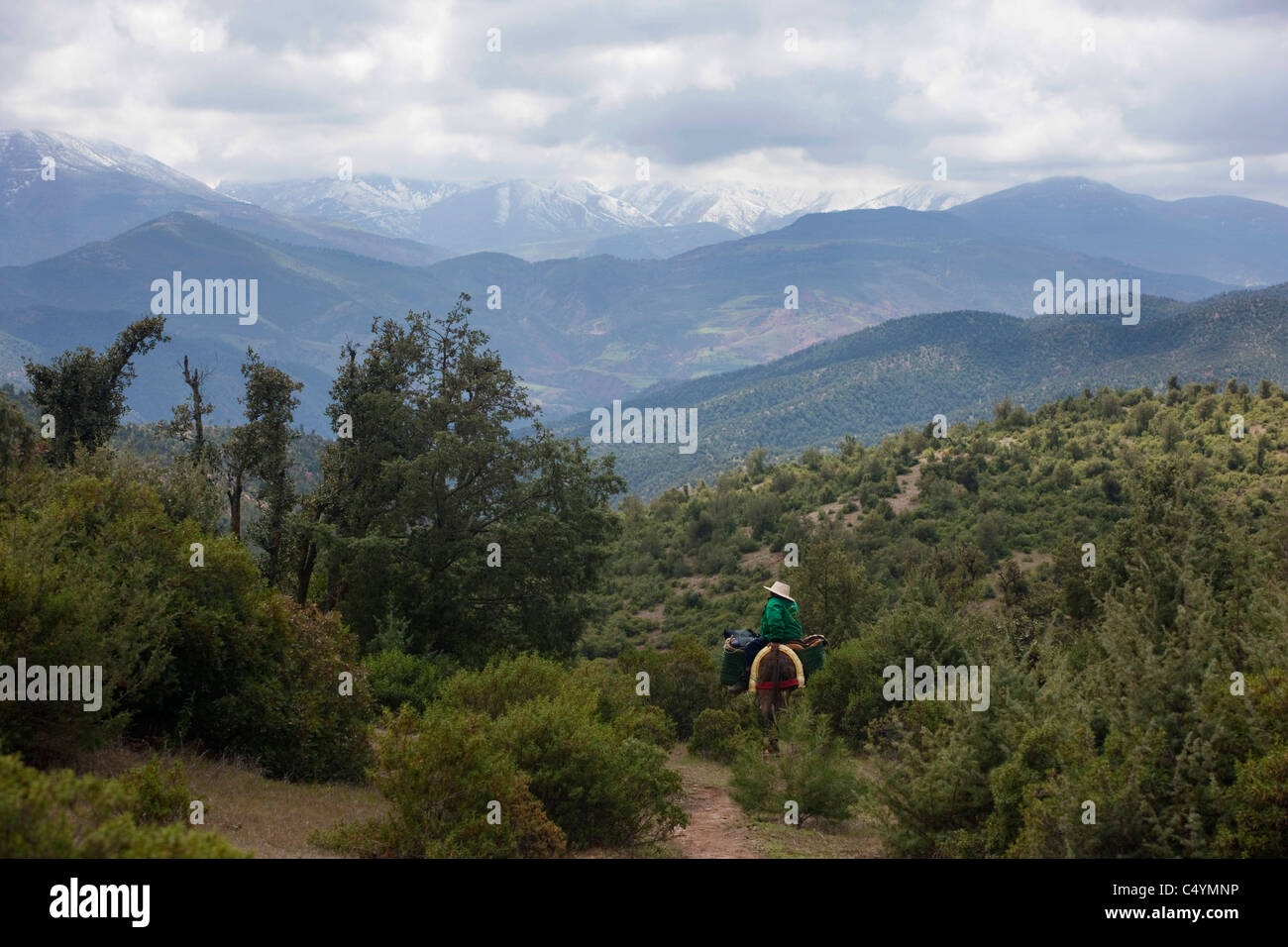 Local transportation in the Ourika valley below the Atlas mountains, Morocco. - Stock Image
