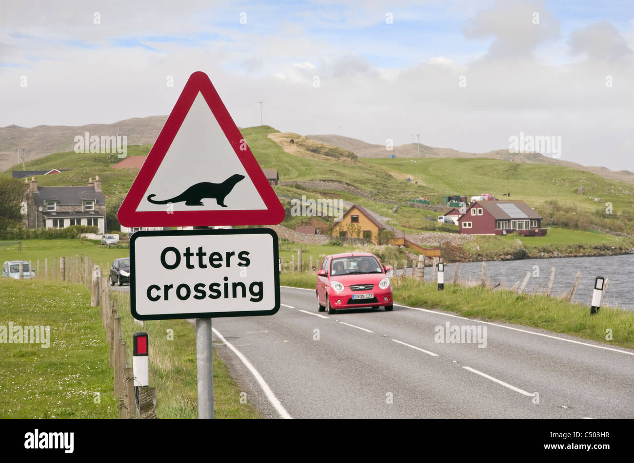 Road sign warning otters crossing on a Scottish main road near a sea loch on coast. Whiteness, Shetland Islands, - Stock Image