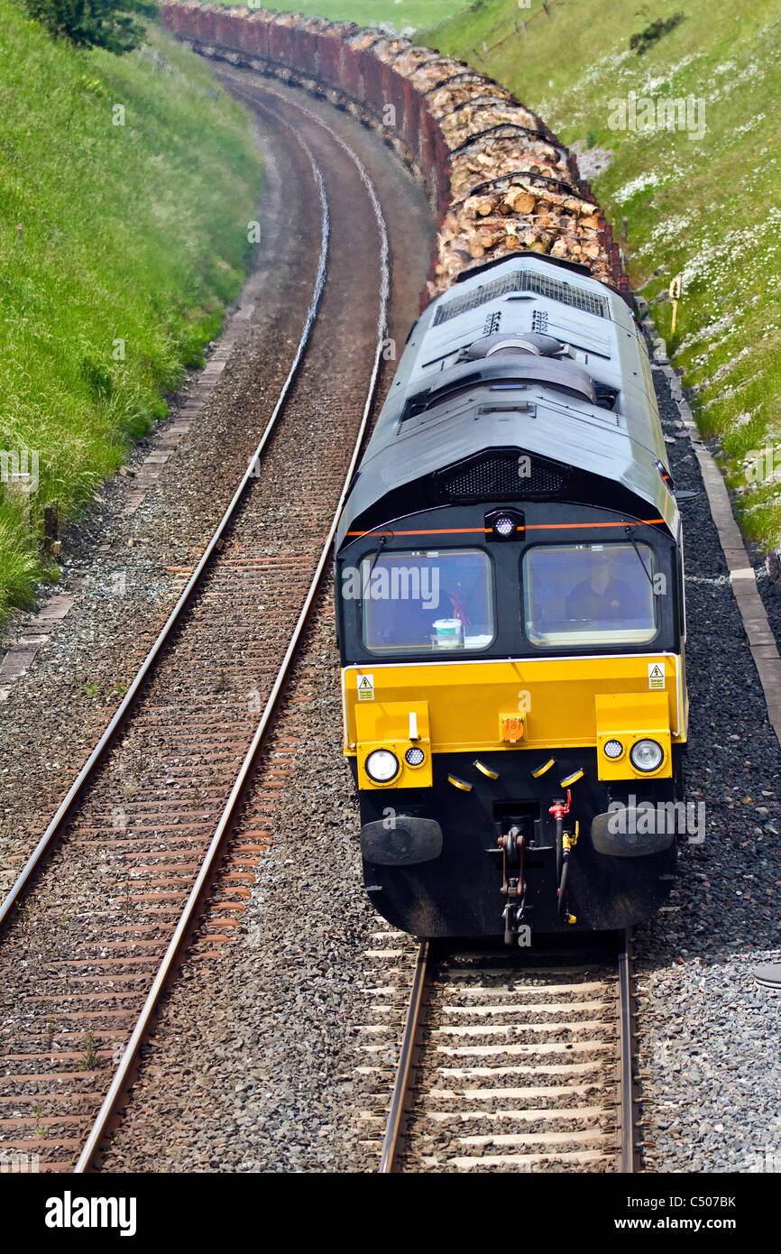 GB Freight Colas Rail Long Log Trains Carlisle Yard to Chirk loaded with Timber at Tebay Railway Station, Kirkby - Stock Image