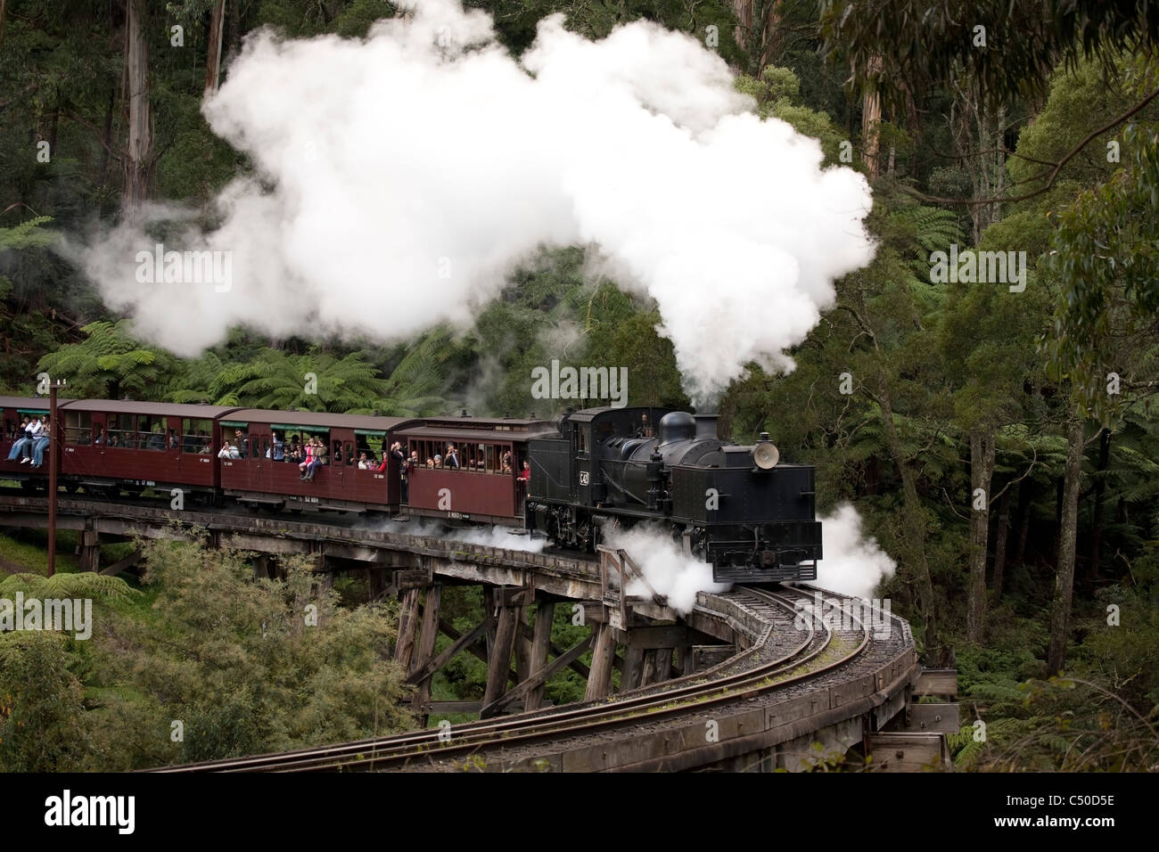 This century-old steam train is still running on its original mountain track in the scenic Dandenong Ranges Melbourne - Stock Image