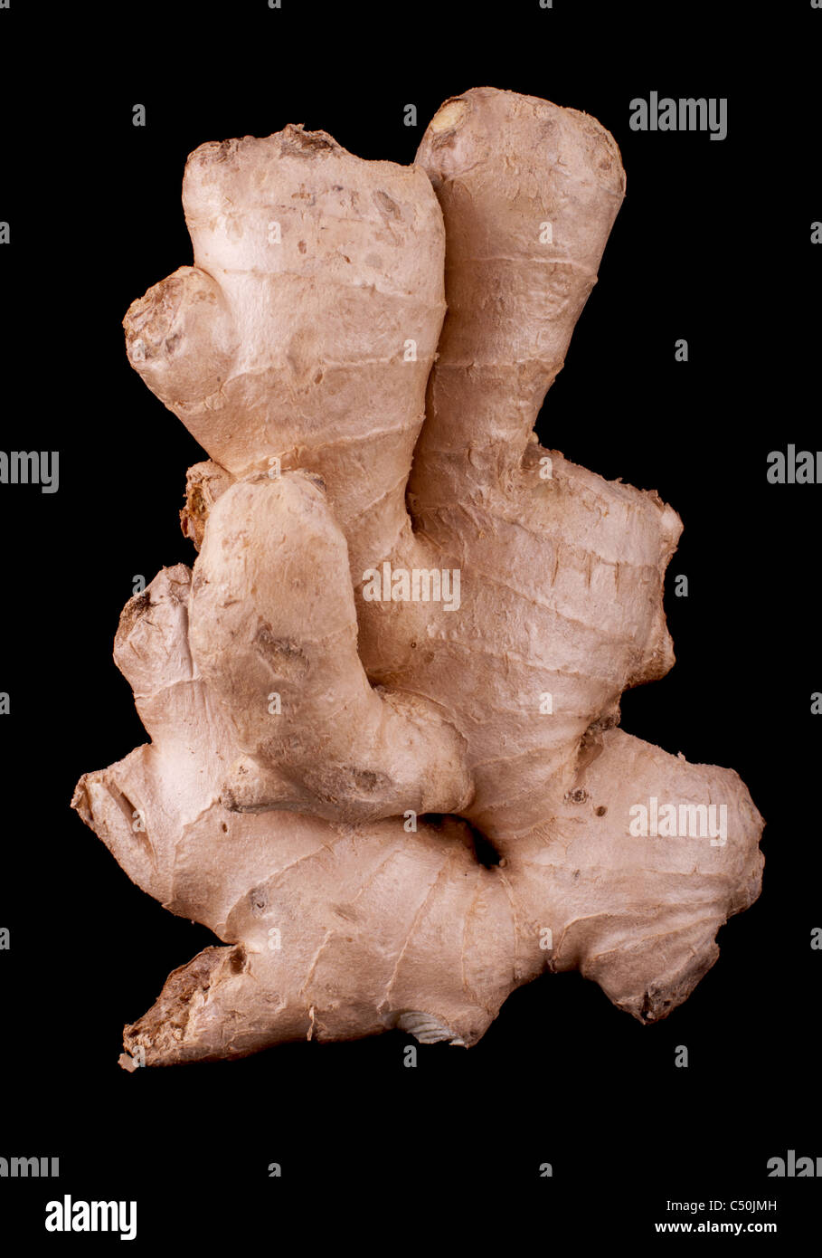 Single ginger isolated on black background - Stock Image