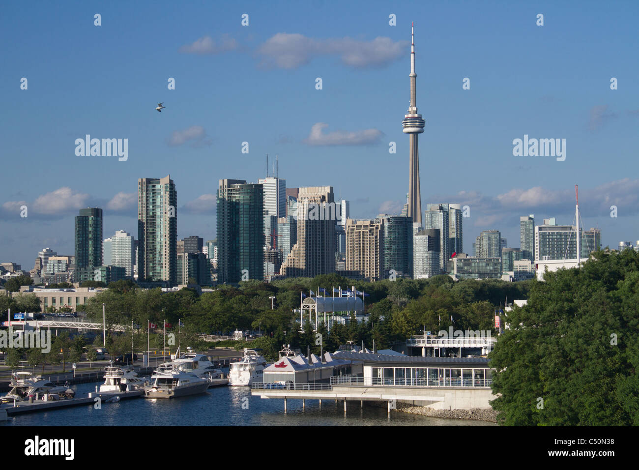 toronto sunny 'cn tower' 'harbour front' - Stock Image