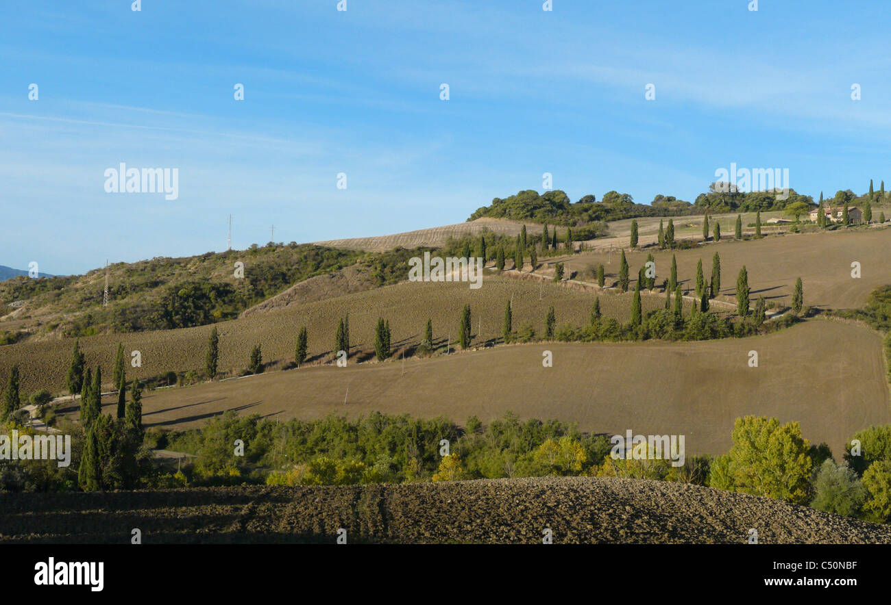 Famous curve in the road lined by cypresses near La Foce in the Val d'Orcia in Tuscany, Italy. Stock Photo