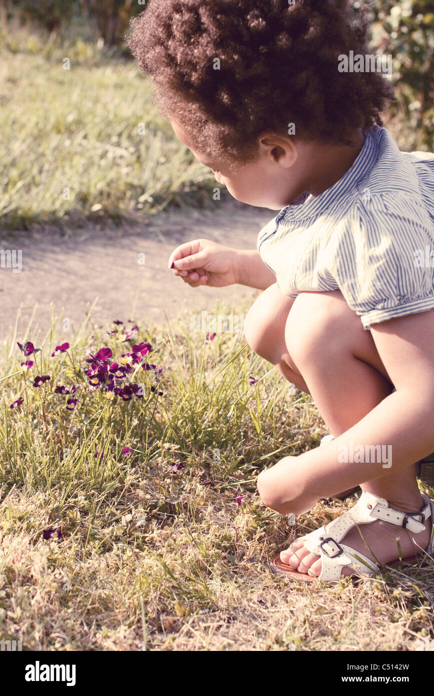 Little girl looking at a petal in her hand - Stock Image